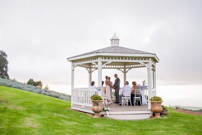 lavender-farm-wedding